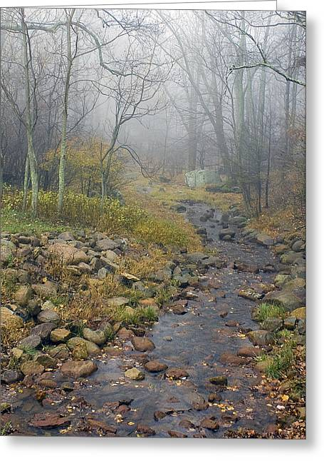 Mountain Stream Greeting Card by Alan Raasch