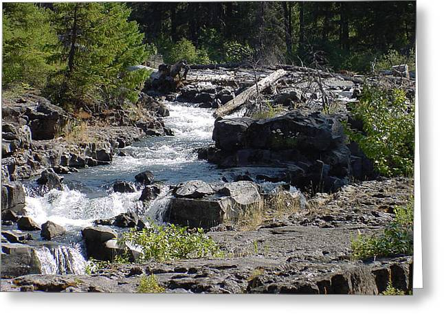 Mountain Stream Greeting Card by Dave Clark