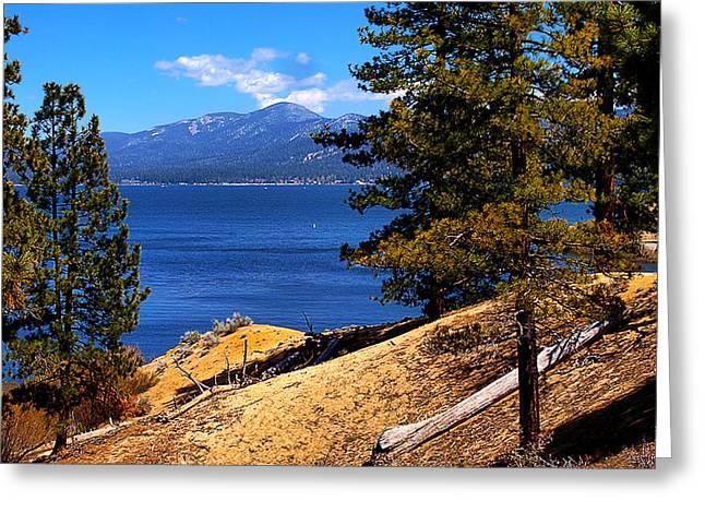 Mountain Thru The Pines Greeting Card