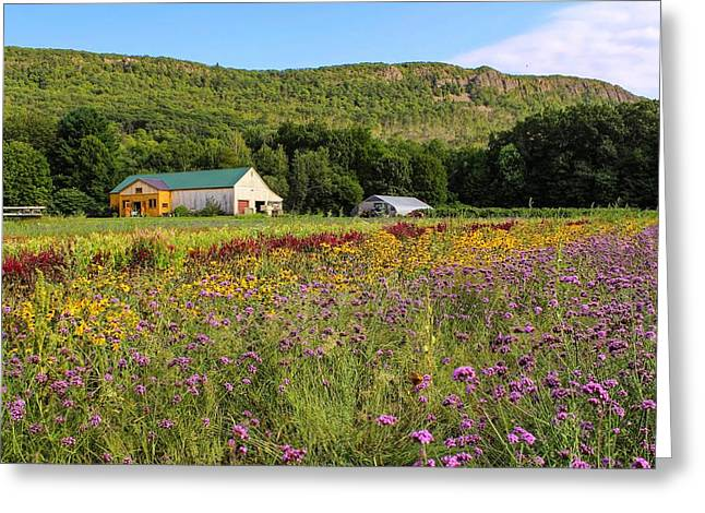 Mountain View Farm Easthampton Greeting Card