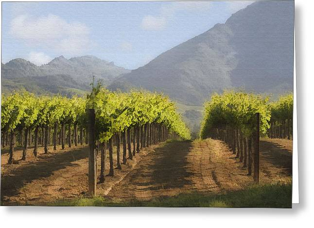 Mountain Vineyard Greeting Card by Sharon Foster