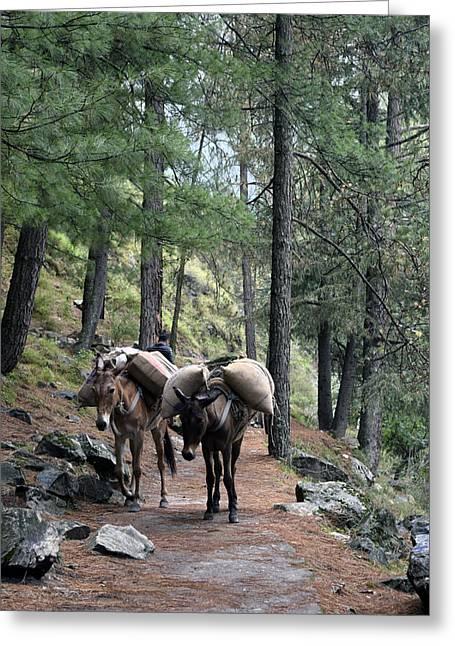 Mountain Walk Greeting Card by Sumit Mehndiratta
