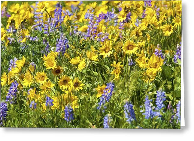 Mountain Wild Flowers W3571 Greeting Card by Wes and Dotty Weber