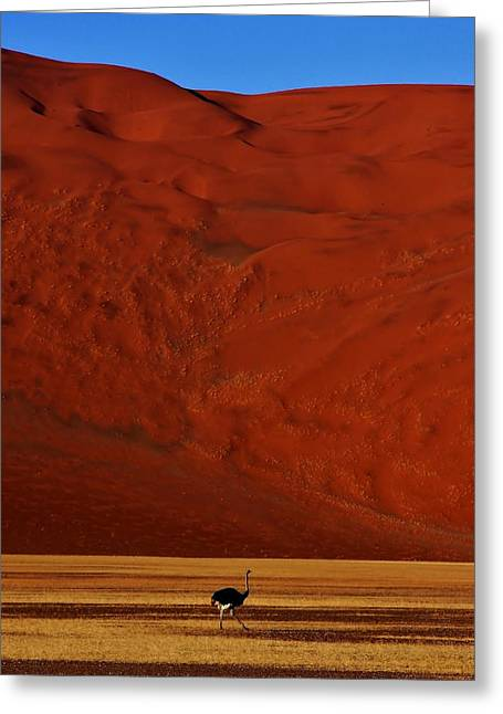 Mountainous Dune Greeting Card
