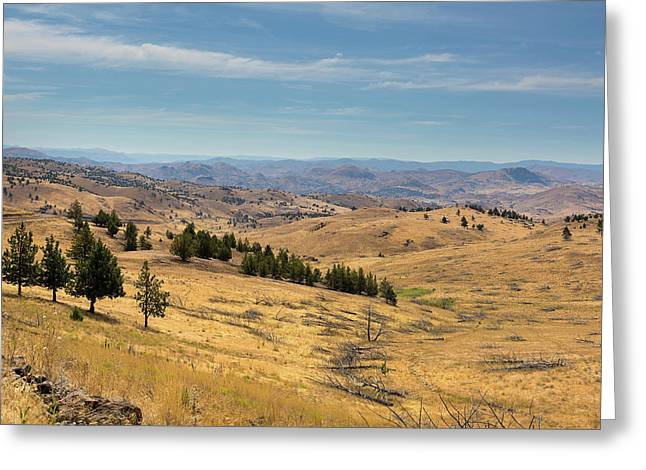 Mountainous Terrain In Central Oregon Greeting Card