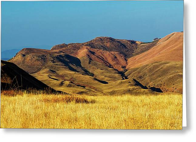 Mountains Of South Africa Greeting Card by Steve Buissine