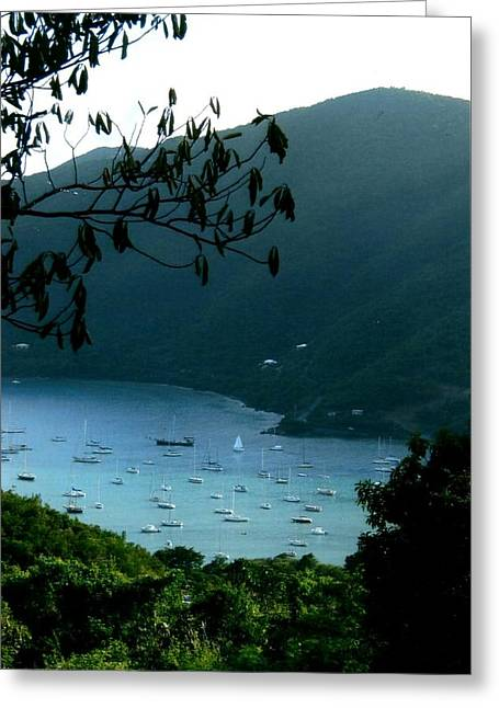 Mountainside Coral Bay Greeting Card by Robert Nickologianis