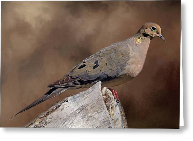 Greeting Card featuring the photograph Mourning Dove by Donna Kennedy