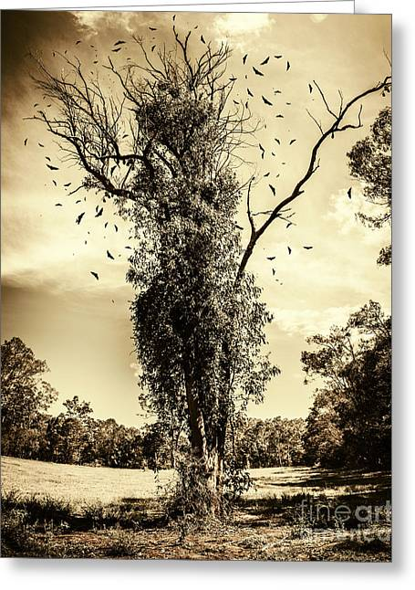 Mourning Tree Greeting Card