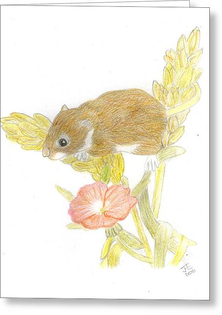 Mouse On The Corn Greeting Card by Jacqueline Essex