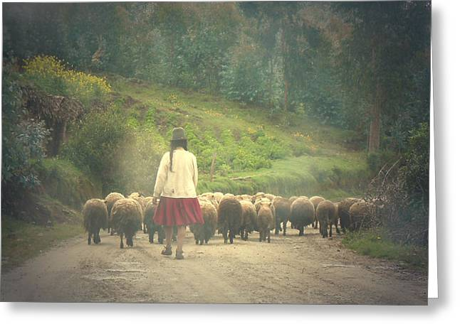 Moving To Greener Pastures Ankawasi Peru Greeting Card