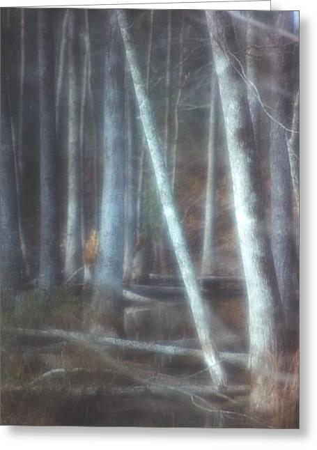 Mprints -winter Beauty Greeting Card by M  Stuart