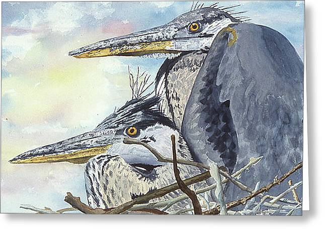 Mr And Mrs Bird Greeting Card by Don Bosley