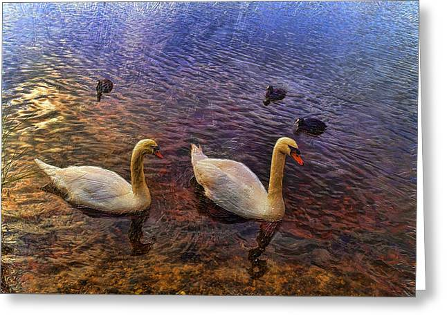 Mr And Mrs Swan Go Viisiting Greeting Card
