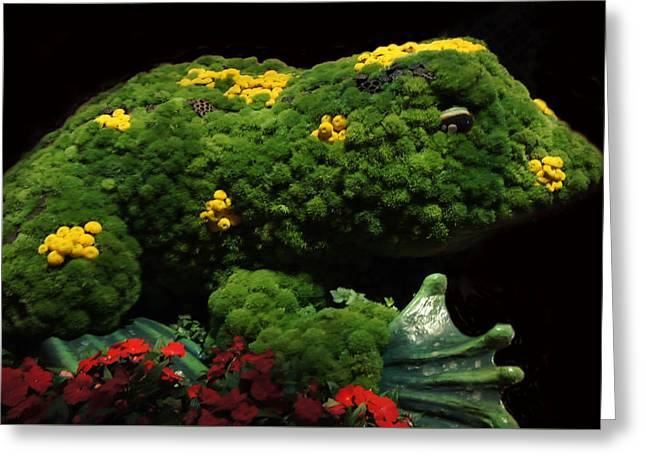 Mr Frog Greeting Card by Art Spectrum