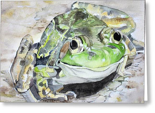 Mr Frog  Greeting Card