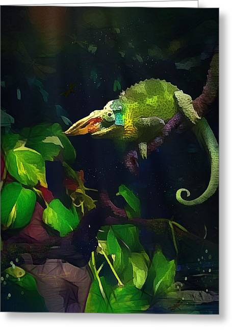 Greeting Card featuring the photograph Mr. H.c. Chameleon Esquire by Sharon Jones