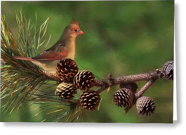 Mrs. Cardinal Greeting Card by Lori Deiter