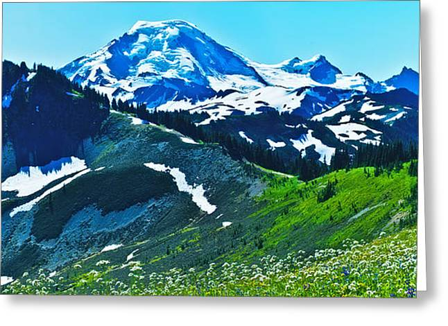 Mt Photographs Greeting Cards - Mt Baker from the Skyline Ridge Trail Greeting Card by Alvin Kroon