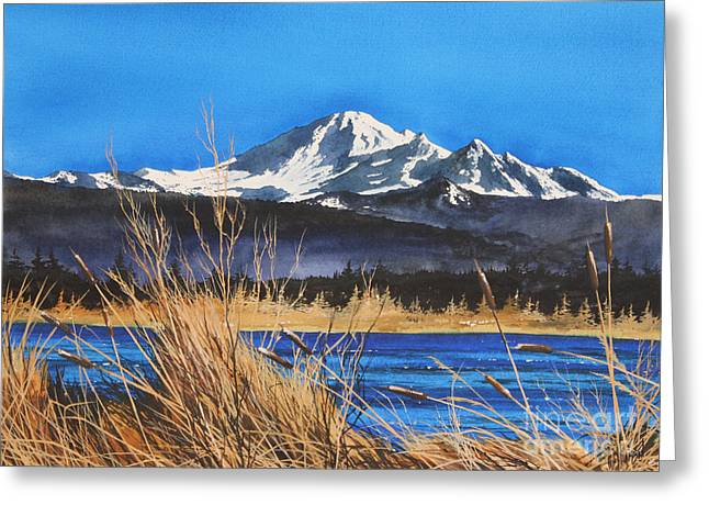 Mt Baker Wiser Lake Greeting Card by James Williamson