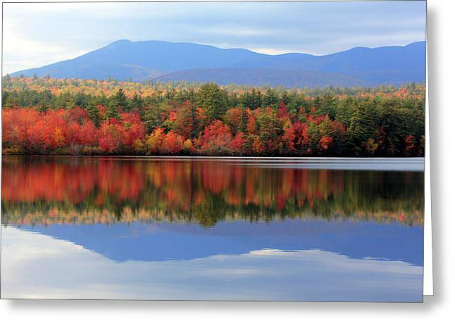 Mt. Chocorua Reflections I Greeting Card by Lynne Guimond Sabean