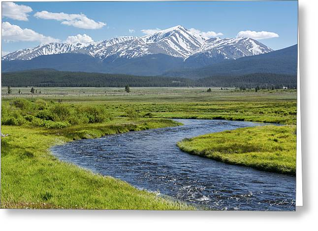 Mt. Elbert - Spring Greeting Card by Aaron Spong