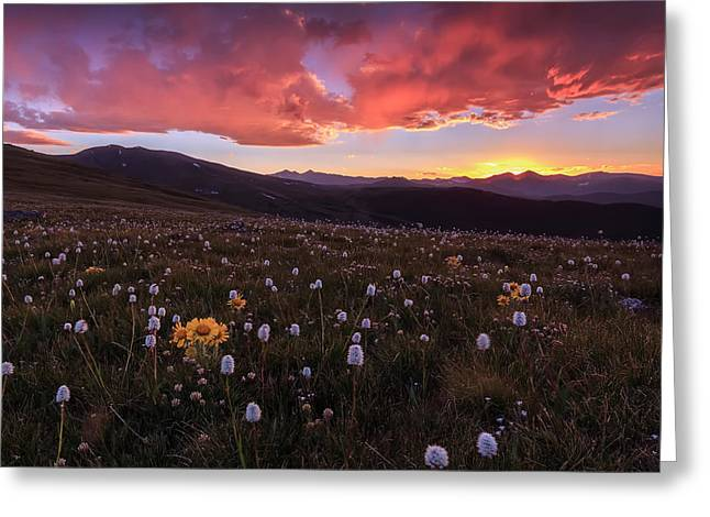 Mt. Evans Sunset Greeting Card by Jennifer Grover