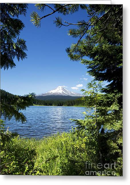 Greeting Card featuring the photograph Mt. Hood And Trillium Lake - Oregon by Charmian Vistaunet