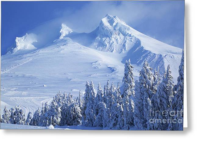 Mt. Hood Greeting Card