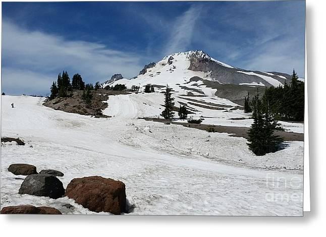 Mt. Hood In June Greeting Card