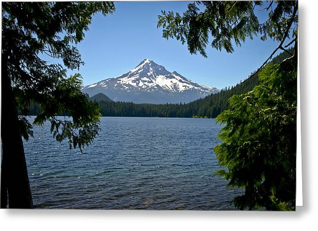 Mt Hood Over Lost Lake Greeting Card