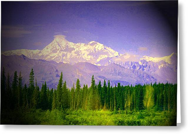 Greeting Card featuring the photograph Mt Mckinley Ambiance by Jack G  Brauer