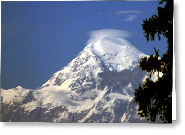Mt. Mckinley From 60 Miles Away Greeting Card by Jack G  Brauer