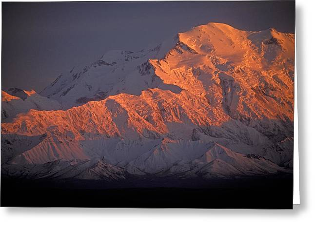 Snow Capped Greeting Cards - Mt. McKinley Sunset Greeting Card by Sandra Bronstein