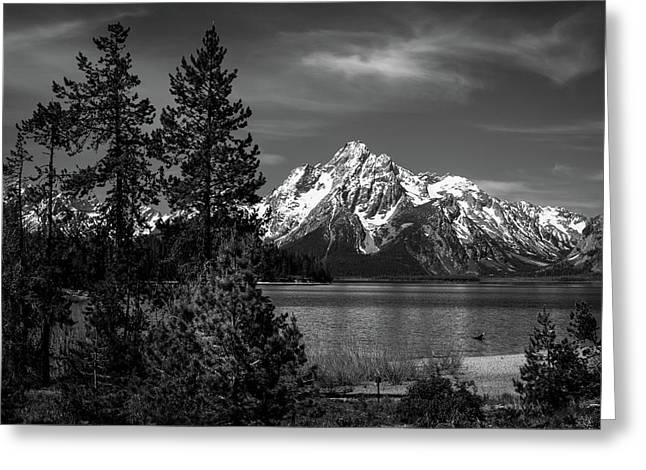 Mt. Moran And Trees Greeting Card