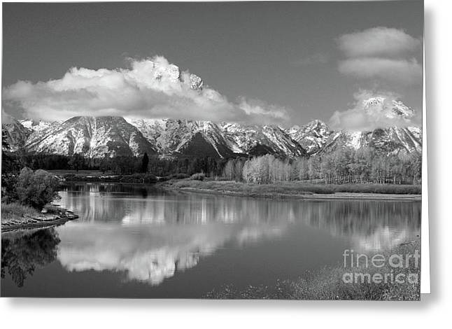 Mt. Moran  In Black And White Greeting Card by Edward R Wisell