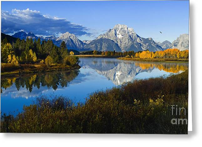 Mt. Moran On The Snake River Greeting Card