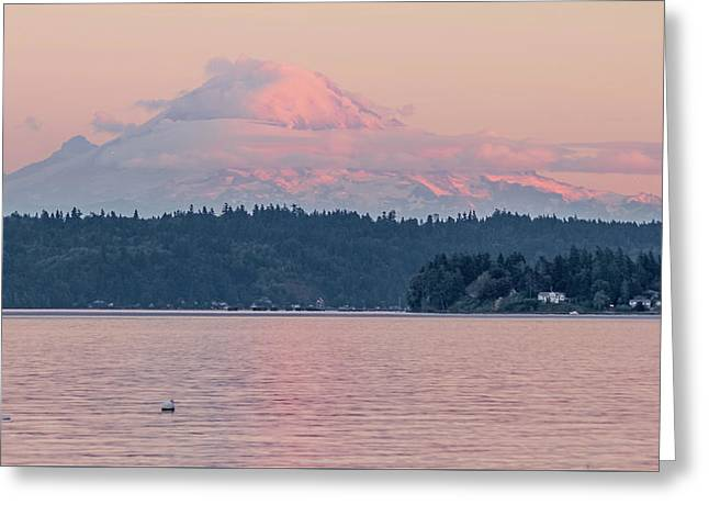 Mt. Rainier At Sunset Greeting Card