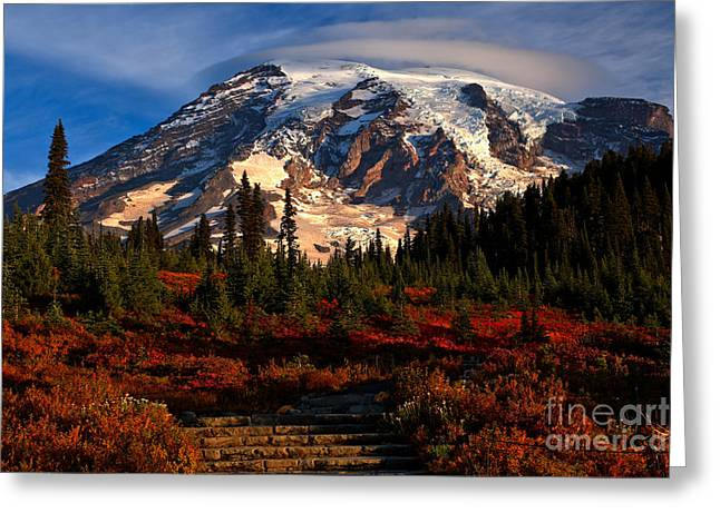 Mt. Rainier Paradise Morning Greeting Card
