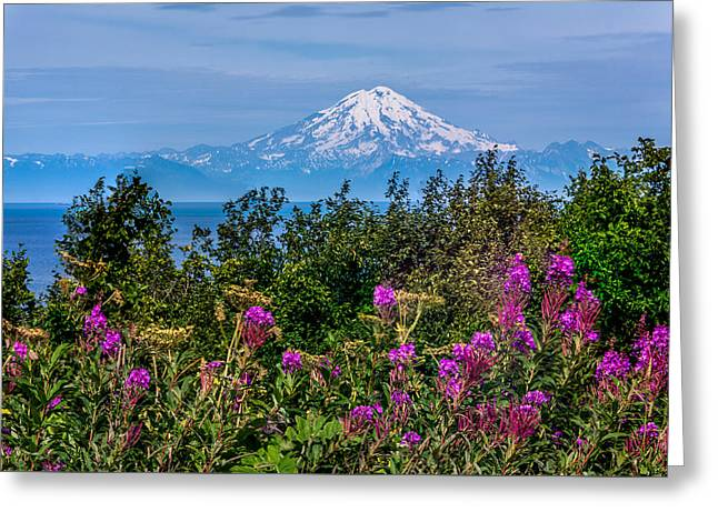 Greeting Card featuring the photograph Mt. Redoubt by Claudia Abbott
