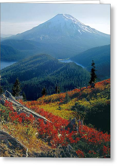 1m4903-mt. St. Helens 1975  Greeting Card