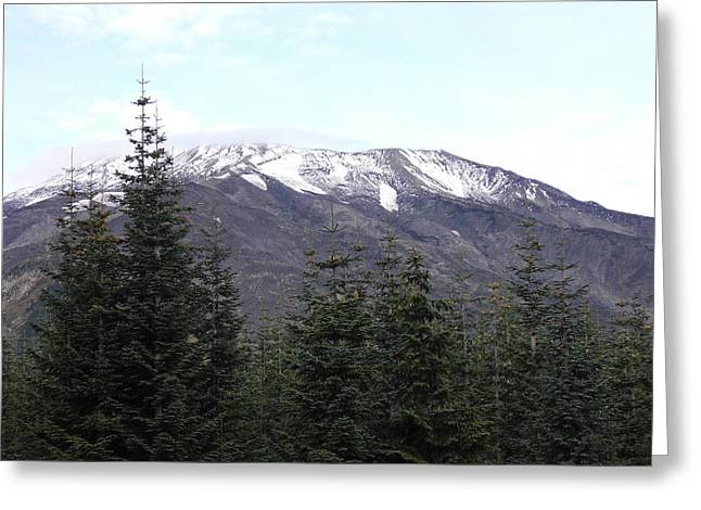 Mt. St. Helens Greeting Card by Mark Camp