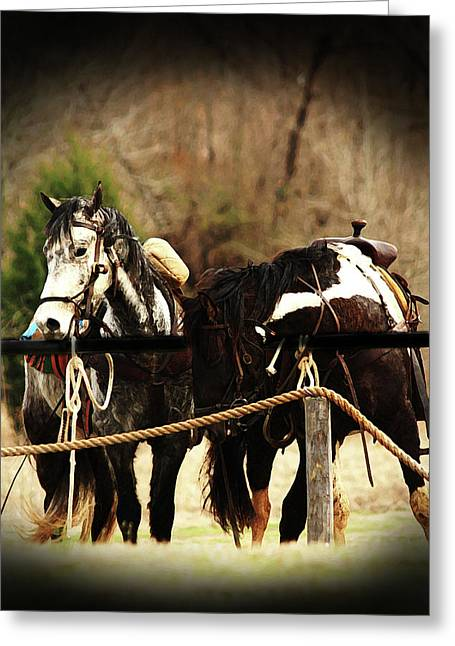 Much Needed Rest Greeting Card by Kim Henderson