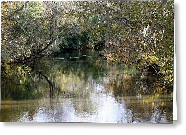 Muckalee Creek Greeting Card