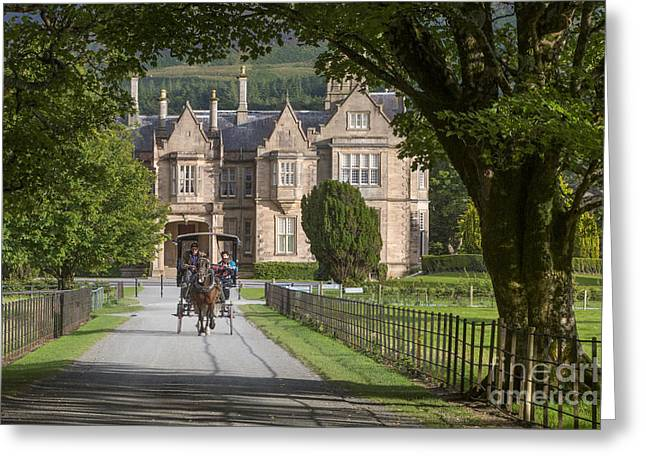 Muckross House And Horse Cart Greeting Card by Brian Jannsen