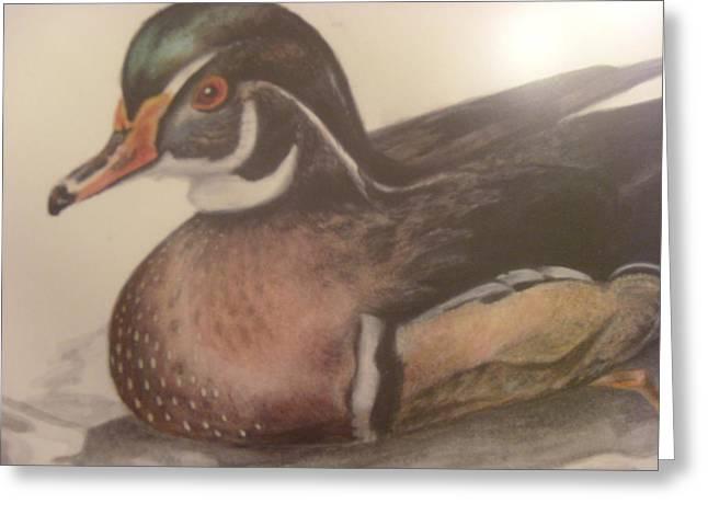 Mud Duck  Greeting Card by Donna Perryman