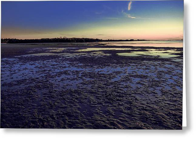 Muddy Beach Greeting Card by Michael Frizzell