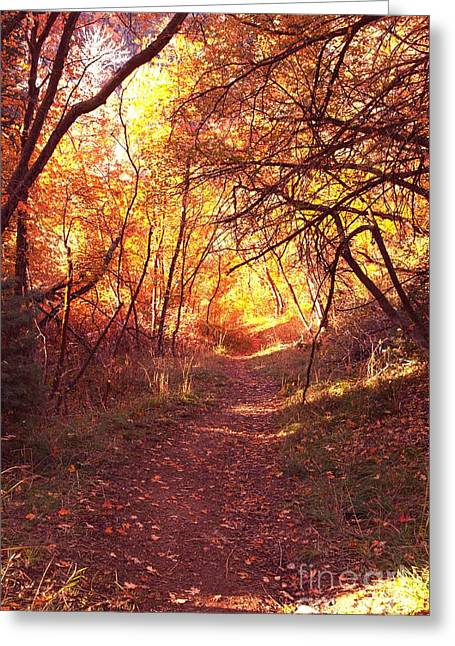 Mueller Park In The Fall Greeting Card