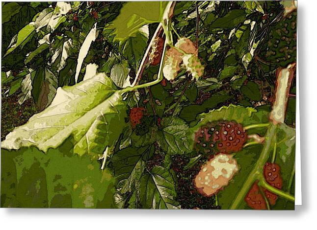 Mulberry Moment Greeting Card by Winsome Gunning