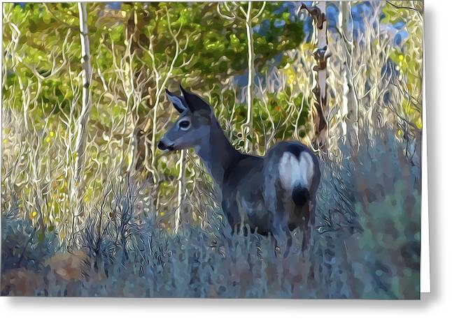 Mule Deer A Stylized Landscape By Frank Lee Hawkins Greeting Card